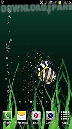 fish aquarium live wallpaper free