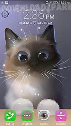 peper the kitten