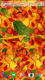 autumn leaves 3d lwp