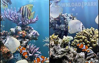The real aquarium - lwp