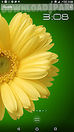 rotating flower