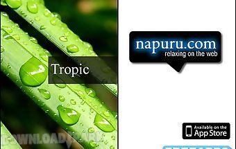 Tropic rain forest stress