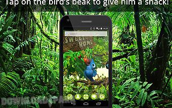 Ur 3d cute jungle birds hd