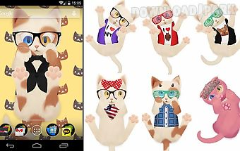 Hd cat live wallpaper