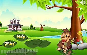 Monkey thief ii