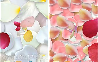 Petals 3d by blackbird wallpaper..