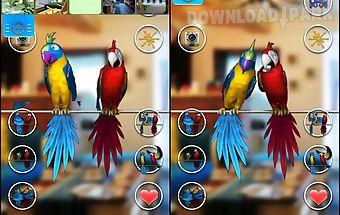 Talking parrot couple free