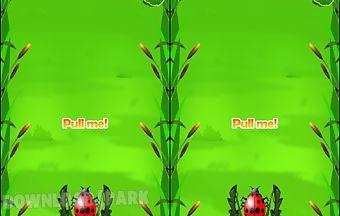 Rush beetle game