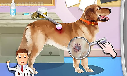 pet vet dr - animals hospital