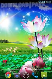 lotus live wallpaper