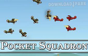 Pocket squadron