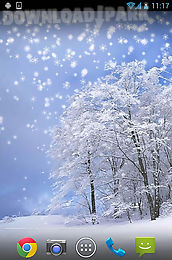 winter: snow by orchid