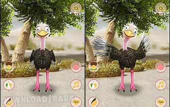 Talking ostrich free