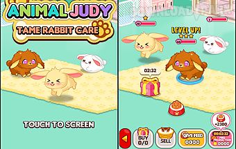 Animal judy: tame rabbit care