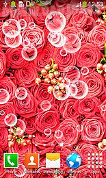 roses live wallpapers