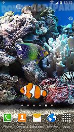 coral fish 3d