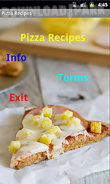 pizza recipes n more