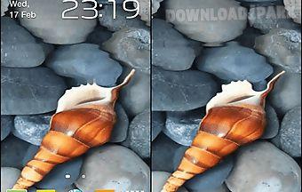 Seashell by memory lane