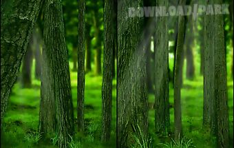 Realdepth forest free lwp