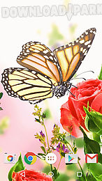 butterfly by fun live wallpapers