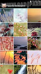 peaceful wallpapers
