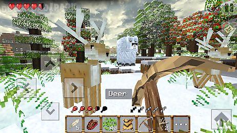 winter craft 4