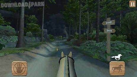 pony trails
