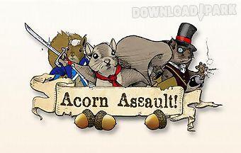Acorn assault! classic