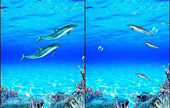 Dolphins sounds