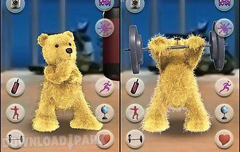 Talking boxing bear