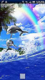 dolphin rainbow trial
