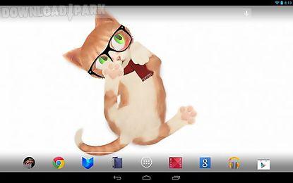 cat hd
