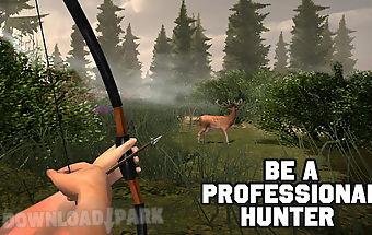 Archery animal hunting master