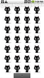 dancing cats live wallpaper