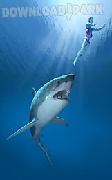 shark game 2016