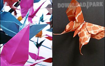 Ornate origami