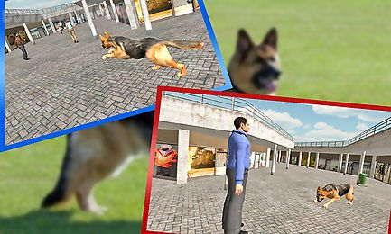 police dog ben crime chase