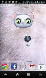 zoo: cat