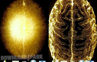 Golden brain hd