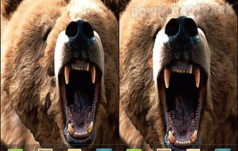 Angry bear live wallpaper