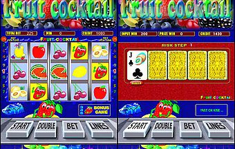 Fruit cocktail slot
