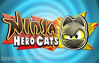 Ninja hero cats
