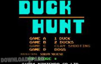 The flying duck hunting