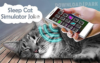 Sleep cat simulator joke