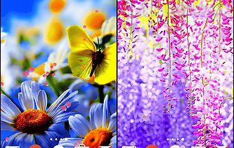 Flowers by phoenix live wallpape..