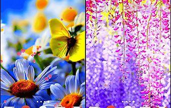 Flowers by phoenix live wallpape..