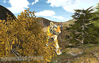 Top simulator tiger