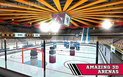 pin hockey: ice arena
