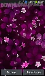 sakura falling