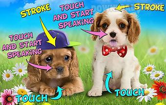 Talking puppies